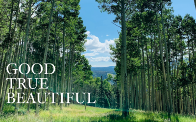 What is Good, True and Beautiful